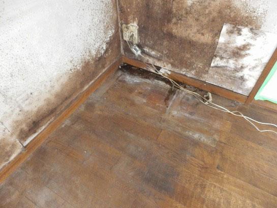 カビた無垢フローリング床