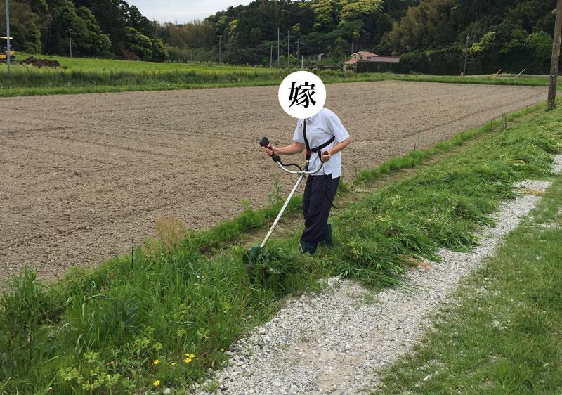 田舎は草刈機が使えないとキツイ