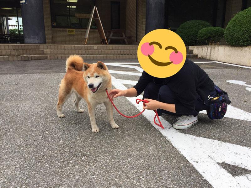 動物愛護センターの譲渡犬と面会