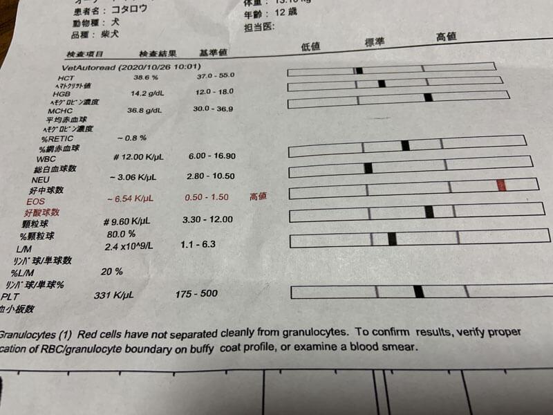 動物病院での血液検査の結果