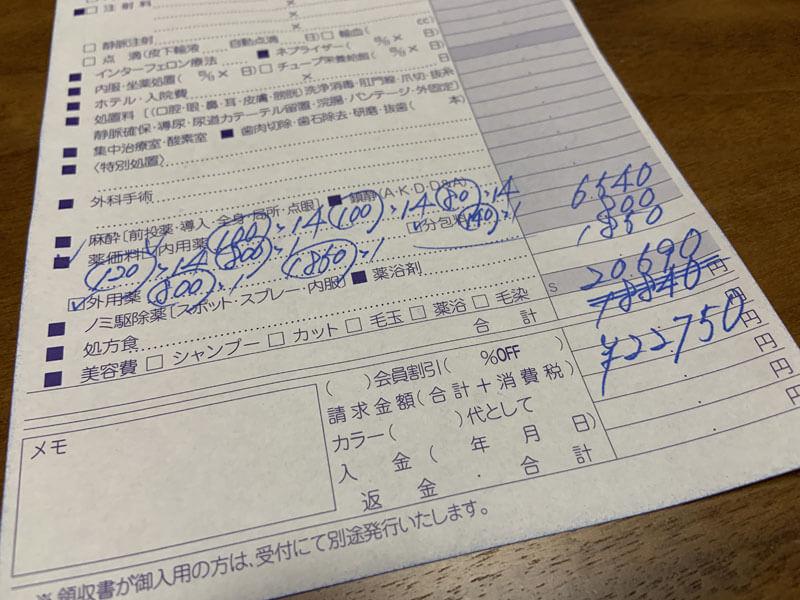 前庭疾患の治療費は2万円超