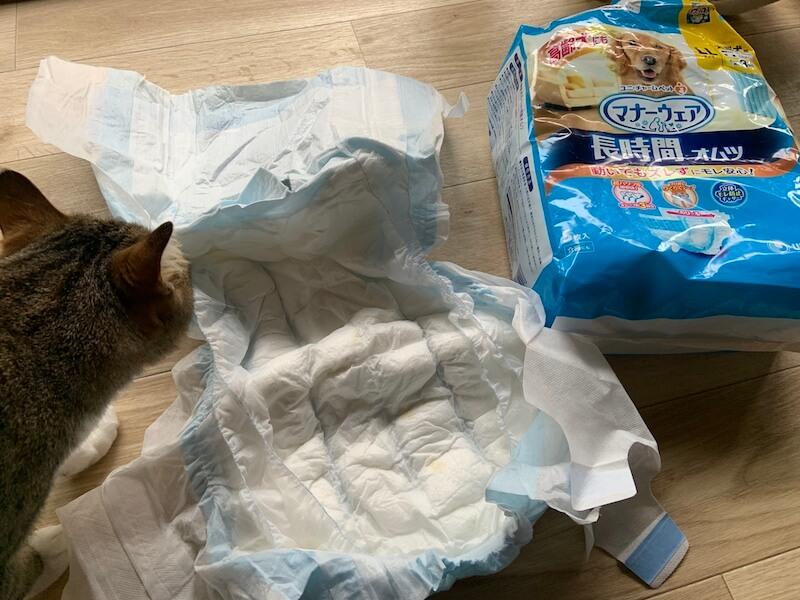 ペット用の紙オムツは値段が高すぎる